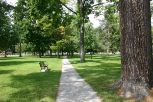 The Amherst Village Green, or Common, is the scene of community gatherings, school outings, and leisurely afternoon strolls.